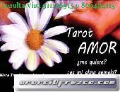 Lectura Profesional de Tarot, Altos Aciertos