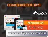 Página Web Básicas, Profesionales y Tienda Virtuales