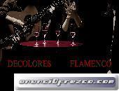 Flamenco De Colores para actuaciones