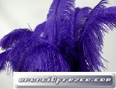 Pluma De Avestruz Para El Carnaval Y La Boda