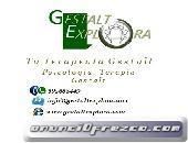 PSICOTERAPIA GESTALT 20 EUROS/H