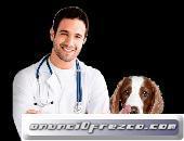 se solicita empresa del area veterinaria