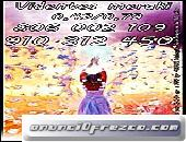 VIDENTE PARA EL AMOR 910312450-806002109