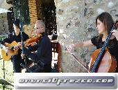 Música clásica y variada, bodas, eventos, toda Cataluña 3