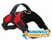 Collar de arnés para mascotas de nylon resistente para perros 5
