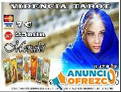 VIDENTE TODA ESPAÑA 910312450/806002109