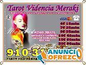 VIDENCIA NATURAL 910312450/806002109